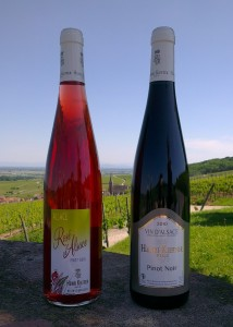 Pinot Noir - Rosé d'Alsace